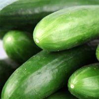 Organic cucumber